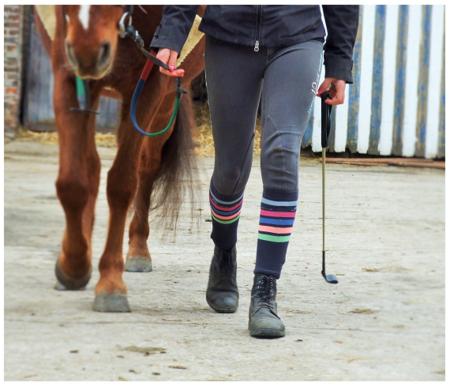 On voit les jambes d'un cheval et celui d'un ou d'une cavalière, avançant ensemble vers la même direction.